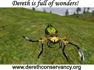 Dereth is full of Wonders!