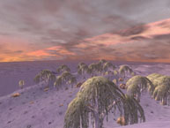 Rithwic Winter Skyline